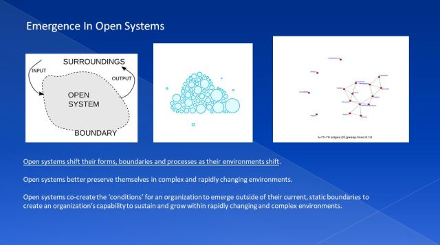 EMERGENCE IN OPEN SYSTEMS